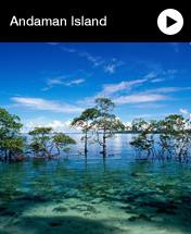 Cheap Andaman Island Holidays